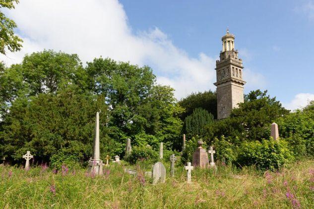 Creepy Creature Cemetery Trail