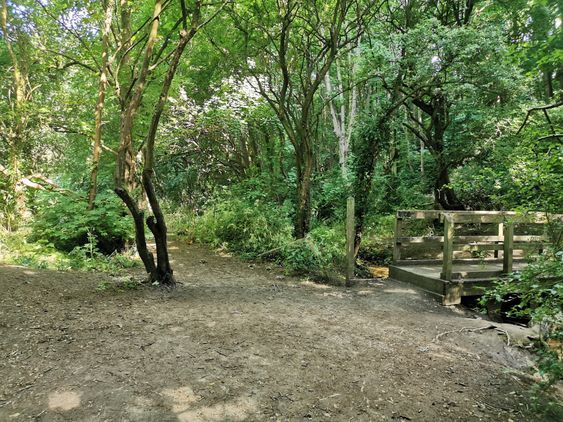 Coombe Brooke Nature Reserve