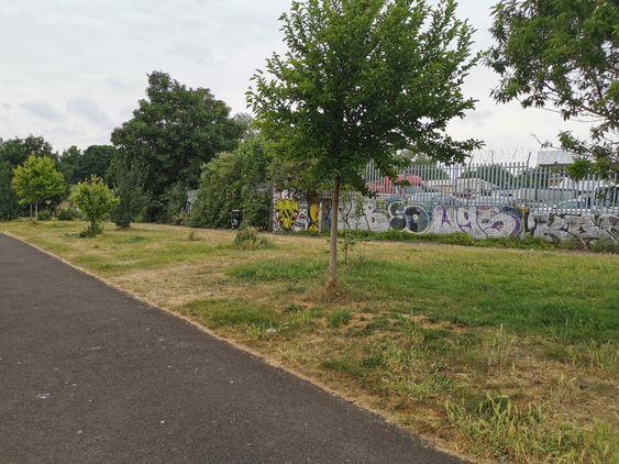 Peel Street Green Space