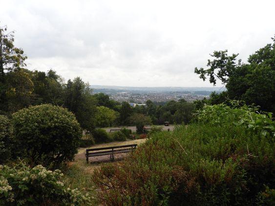Brandon Hill Nature Reserve
