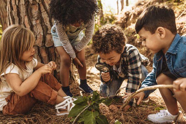 Nature's Hands Woodland Toddler Class