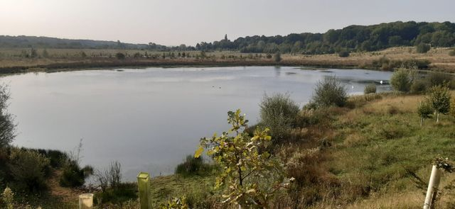 Bubbenhall Wood & Meadow