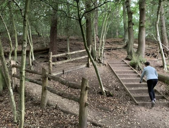 Rowhill Nature Reserve Walk