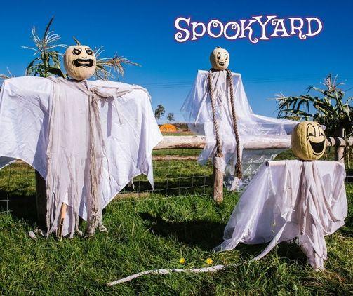 Over Farm Spookyard