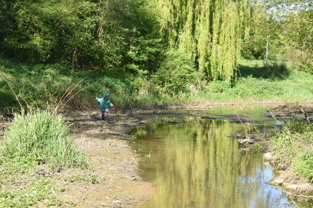 Saintbridge Balancing Ponds