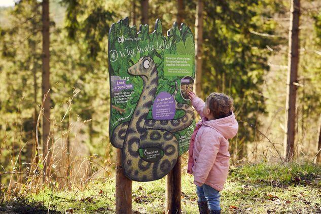 Gruffalo Spotters Trail at Beechenhurst Forest of Dean
