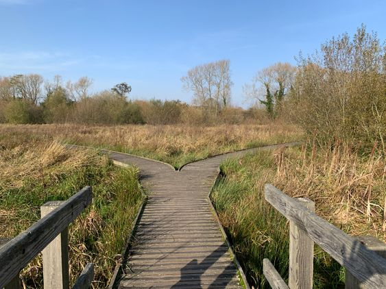 Riverside Park and Nature Reserve