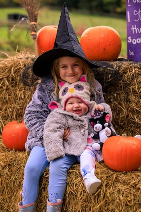 Wizards and Witches Week at Bocketts Farm