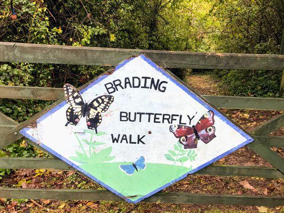 Brading Butterfly Walk