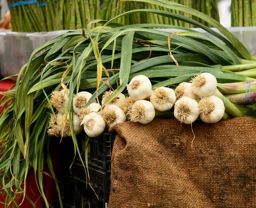 Ryde Farmers' Market