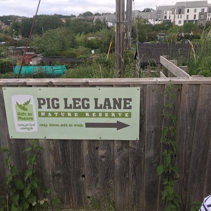 Pig Leg Lane