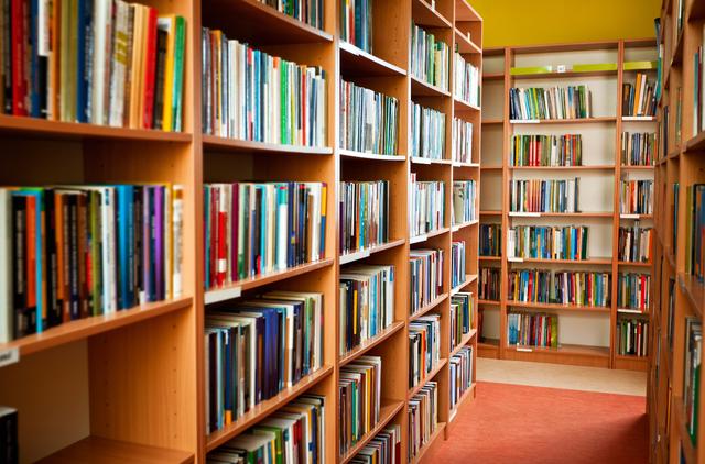 Callington Library