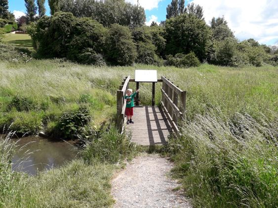 Rushey Platt Nature Reserve