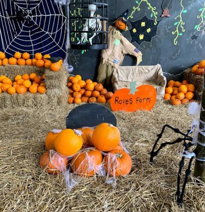 Halloween & October Half Term At Roves Farm