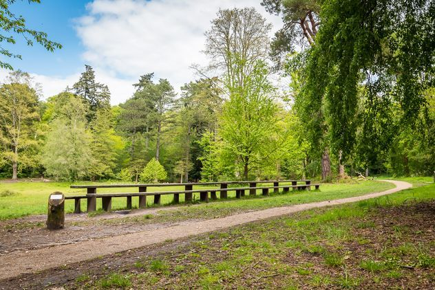 Lily Hill Park